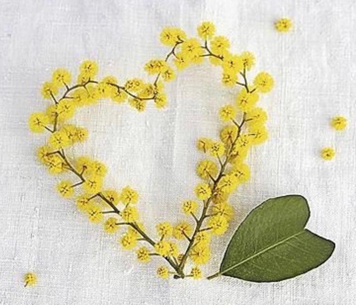 Yellow passion